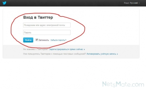 Ввод данных для входа в Твиттер