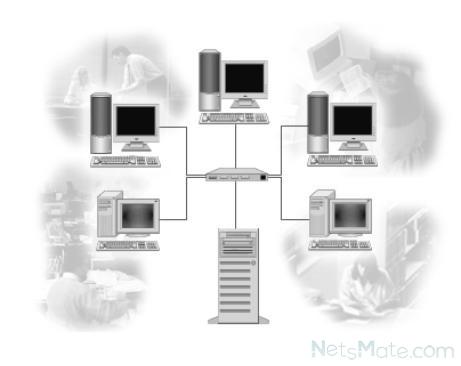 Компьютеры, объединенные в сеть