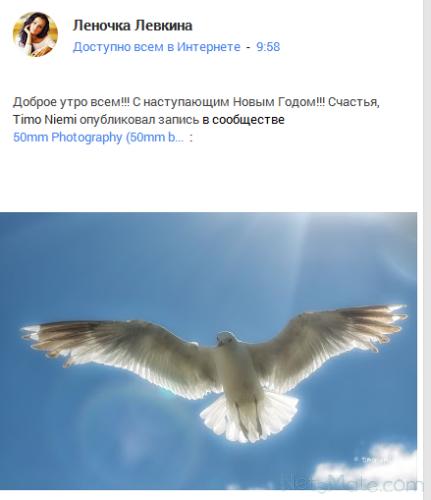 Стандартная запись в Google +
