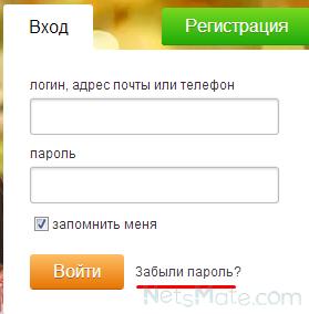 Нажимаем на ссылку «Забыли пароль?»