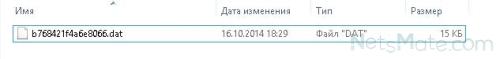 Файл бинарный