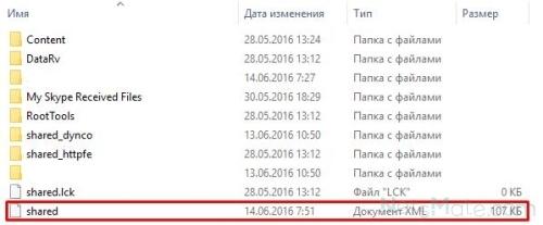 Данный файл